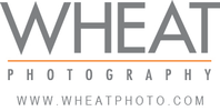 Wheat Photography